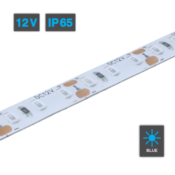 LED Strip Light Blue 12V IP65